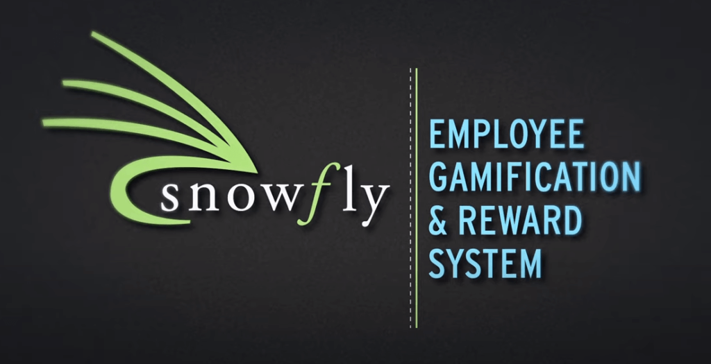 Snowfly Employee Gamification & Rewards